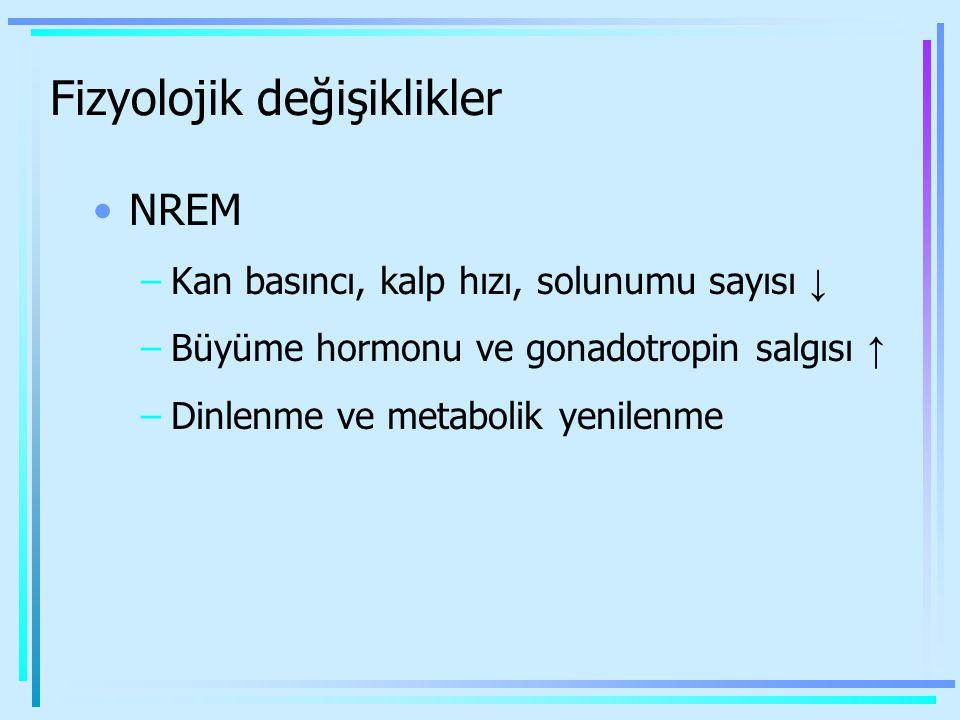 Fizyolojik değişiklikler NREM –Kan basıncı, kalp hızı, solunumu sayısı ↓ –Büyüme hormonu ve gonadotropin salgısı ↑ –Dinlenme ve metabolik yenilenme