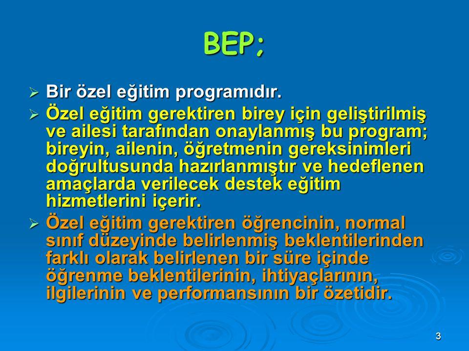3 BEP;  Bir özel eğitim programıdır.