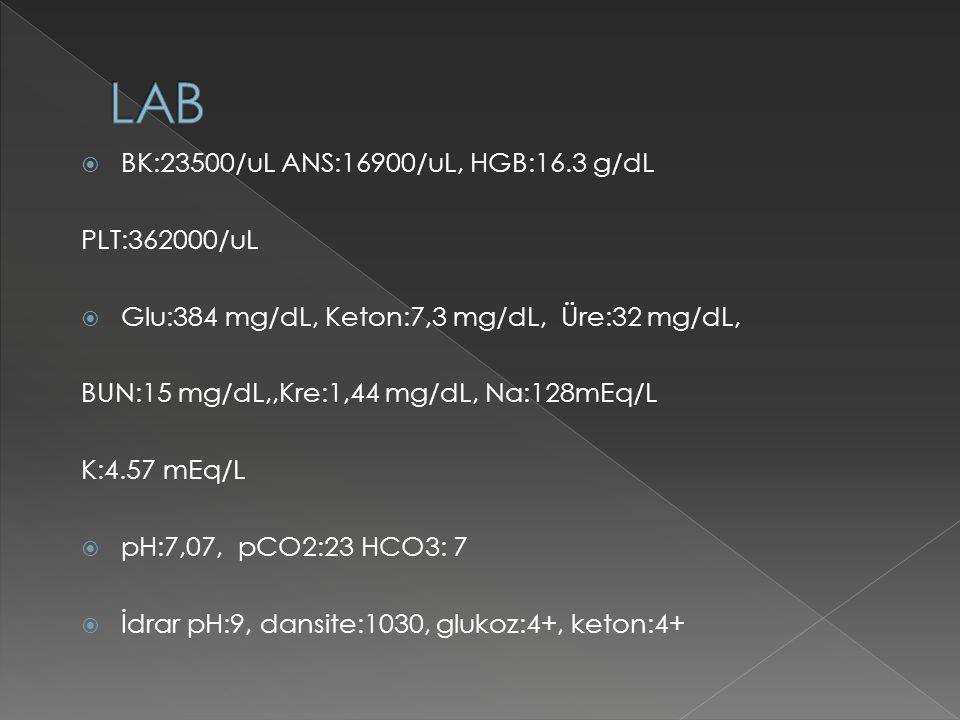  BK:23500/uL ANS:16900/uL, HGB:16.3 g/dL PLT:362000/uL  Glu:384 mg/dL, Keton:7,3 mg/dL, Üre:32 mg/dL, BUN:15 mg/dL,,Kre:1,44 mg/dL, Na:128mEq/L K:4.