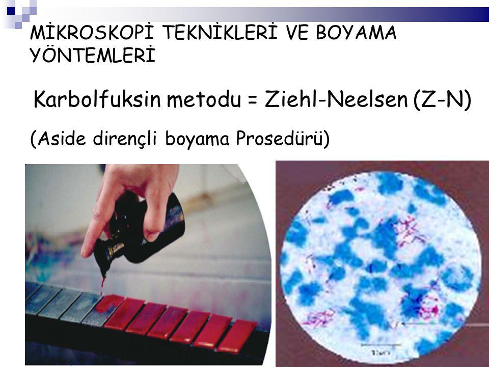 MİKROSKOPİ TEKNİKLERİ VE BOYAMA YÖNTEMLERİ Karbolfuksin metodu = Ziehl-Neelsen (Z-N) (Aside dirençli boyama Prosedürü)