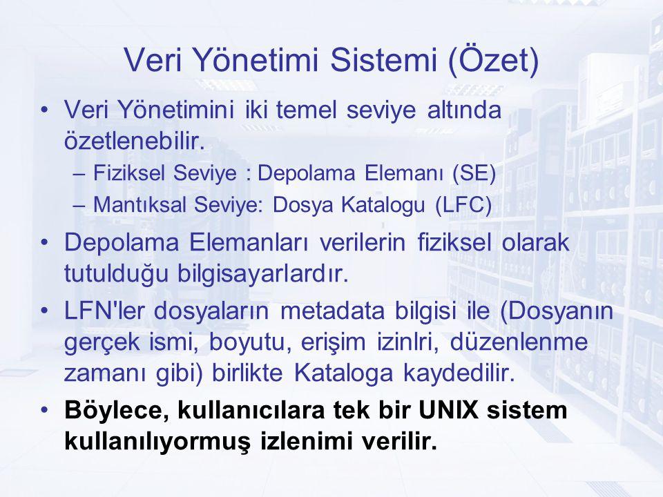 Veri Yönetimi Sistemi (Özet) Veri Yönetimini iki temel seviye altında özetlenebilir.