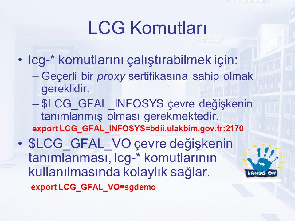 LCG Komutları lcg-* komutlarını çalıştırabilmek için: –Geçerli bir proxy sertifikasına sahip olmak gereklidir.