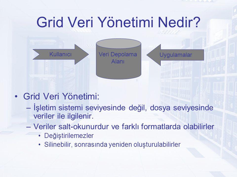 Grid Veri Yönetimi Nedir.