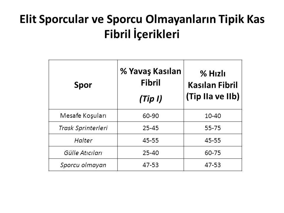 Elit Sporcular ve Sporcu Olmayanların Tipik Kas Fibril İçerikleri Spor % Yavaş Kasılan Fibril (Tip I) % Hızlı Kasılan Fibril (Tip IIa ve IIb) Mesafe K
