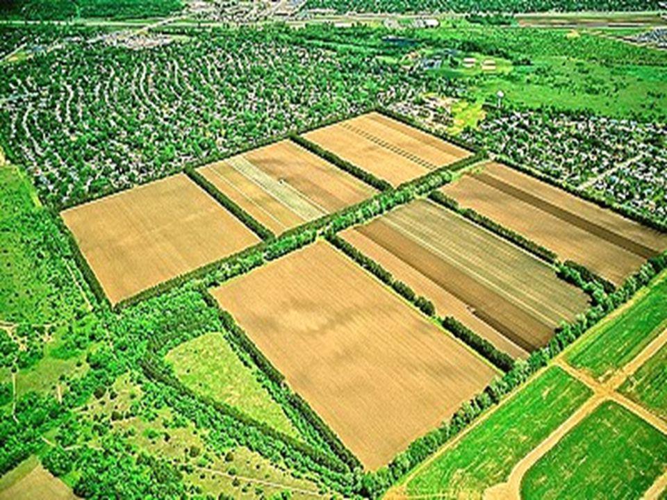 Batılı ülkelerdeki arazi düzenleme çalışmalarında, özellikle Almanya Federal Cumhuriyeti'nde arazi toplulaştırmadaki hedeflere ulaşmada büyük başarı sağlanmış durumdadır.
