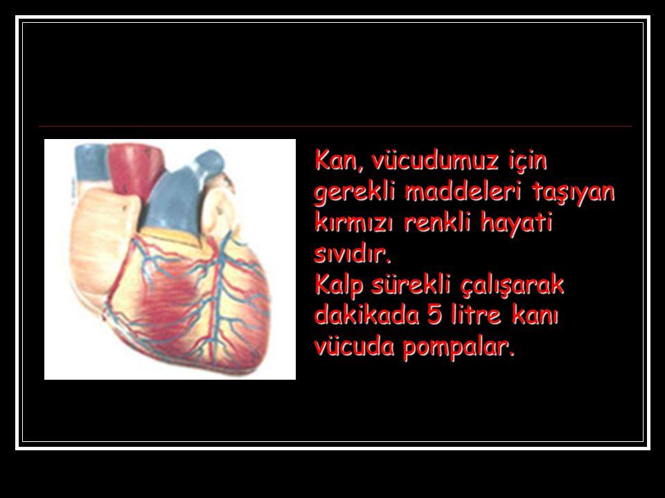Kan, vücudumuz için gerekli maddeleri taşıyan kırmızı renkli hayati sıvıdır. Kalp sürekli çalışarak dakikada 5 litre kanı vücuda pompalar.