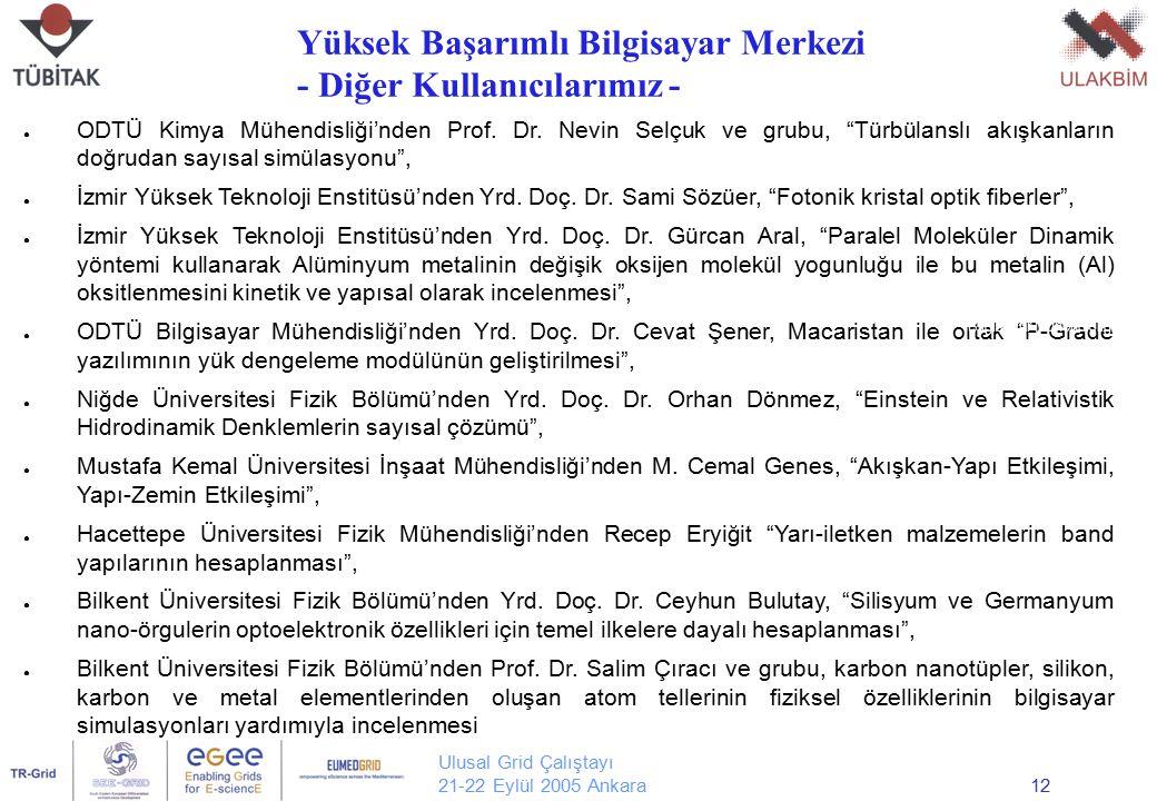 """Ulusal Grid Çalıştayı 21-22 Eylül 2005 Ankara12 ● ODTÜ Kimya Mühendisliği'nden Prof. Dr. Nevin Selçuk ve grubu, """"Türbülanslı akışkanların doğrudan say"""