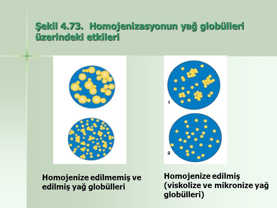 Şekil 4.73. Homojenizasyonun yağ globülleri üzerindeki etkileri Homojenize edilmemiş ve edilmiş yağ globülleri Homojenize edilmiş (viskolize ve mikron