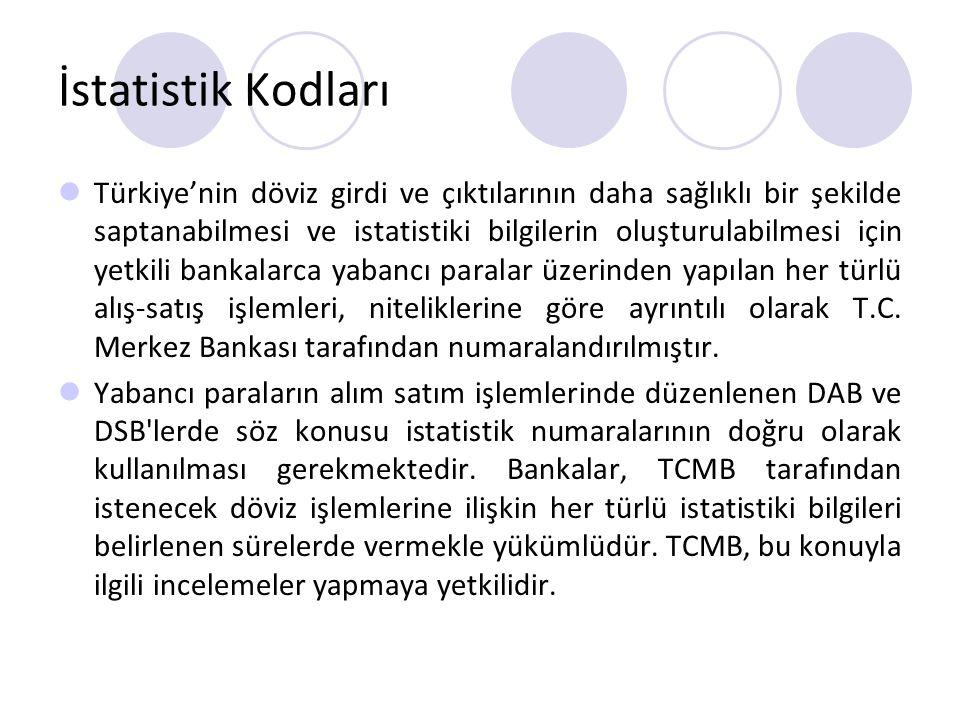 İstatistik Kodları Türkiye'nin döviz girdi ve çıktılarının daha sağlıklı bir şekilde saptanabilmesi ve istatistiki bilgilerin oluşturulabilmesi için y