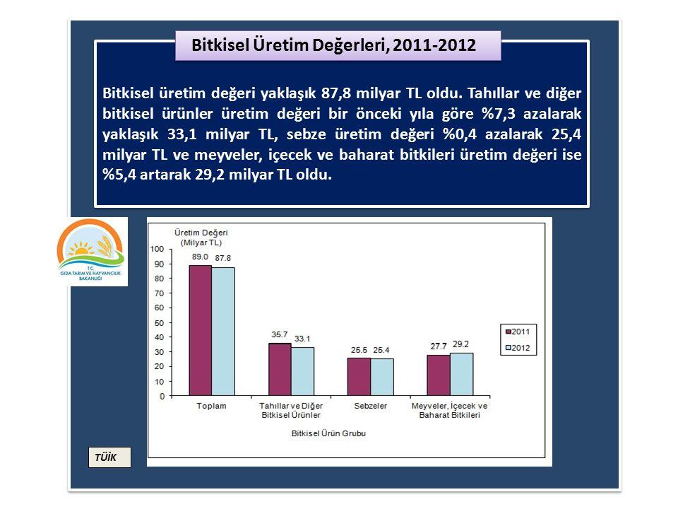 Üretim miktarları, 2013 yılının ikinci tahmininde bir önceki yıla göre tahıl ürünlerinde %12,3, sebzelerde %2,1 ve meyvelerde %1,2 oranında artış göst