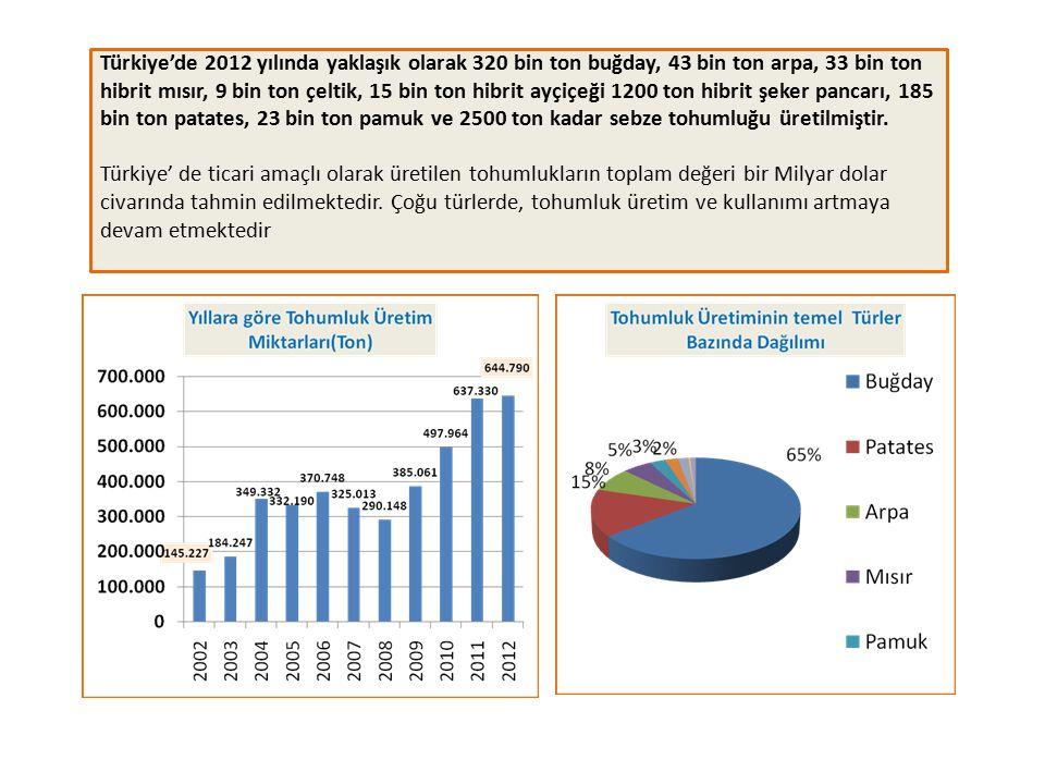 Türkiye'de Üretilen Tohumluk Türleri ve Yıllara Göre Dış Ticaret Değerleri Türkiye tohumluk pazarında, hibrit sebze tohumlukları bu pazarın en büyük k