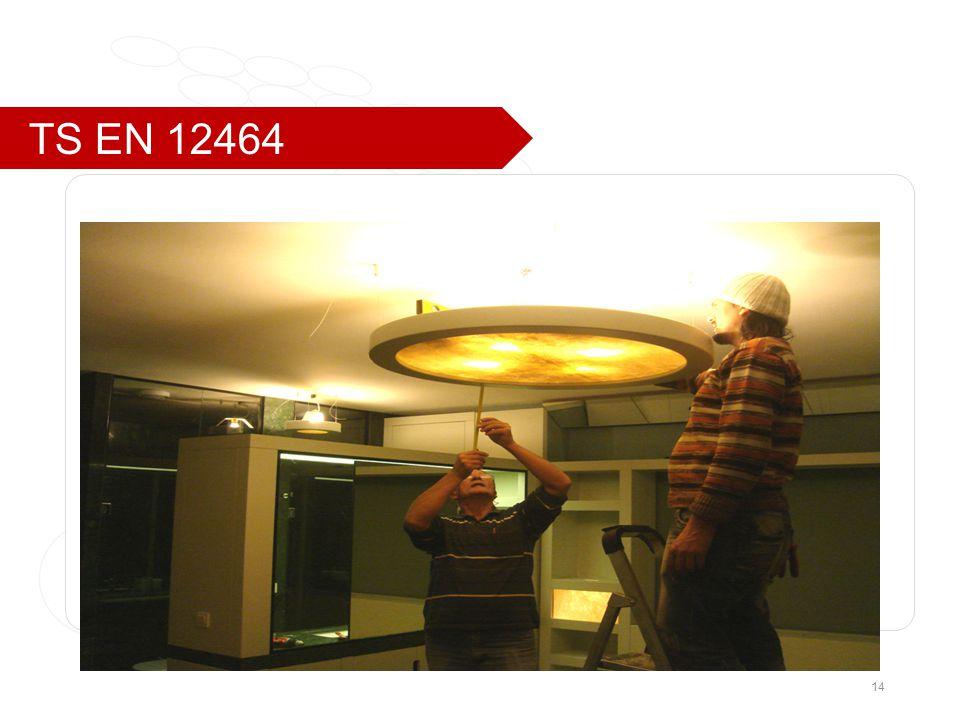 TS EN 12464 14