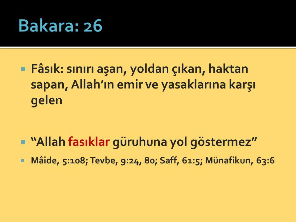 """ Fâsık: sınırı aşan, yoldan çıkan, haktan sapan, Allah'ın emir ve yasaklarına karşı gelen  """"Allah fasıklar güruhuna yol göstermez""""  Mâide, 5:108; T"""