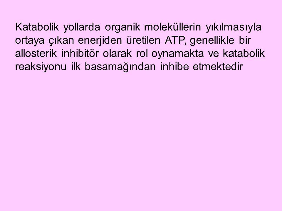 Katabolik yollarda organik moleküllerin yıkılmasıyla ortaya çıkan enerjiden üretilen ATP, genellikle bir allosterik inhibitör olarak rol oynamakta ve