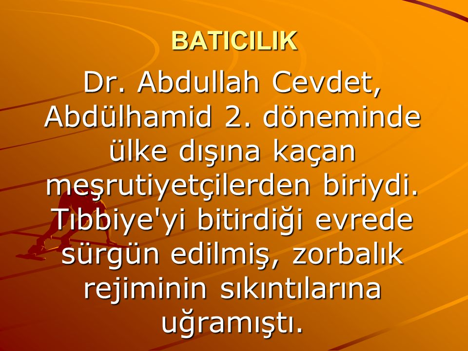 BATICILIK Dr.Abdullah Cevdet, Abdülhamid 2.