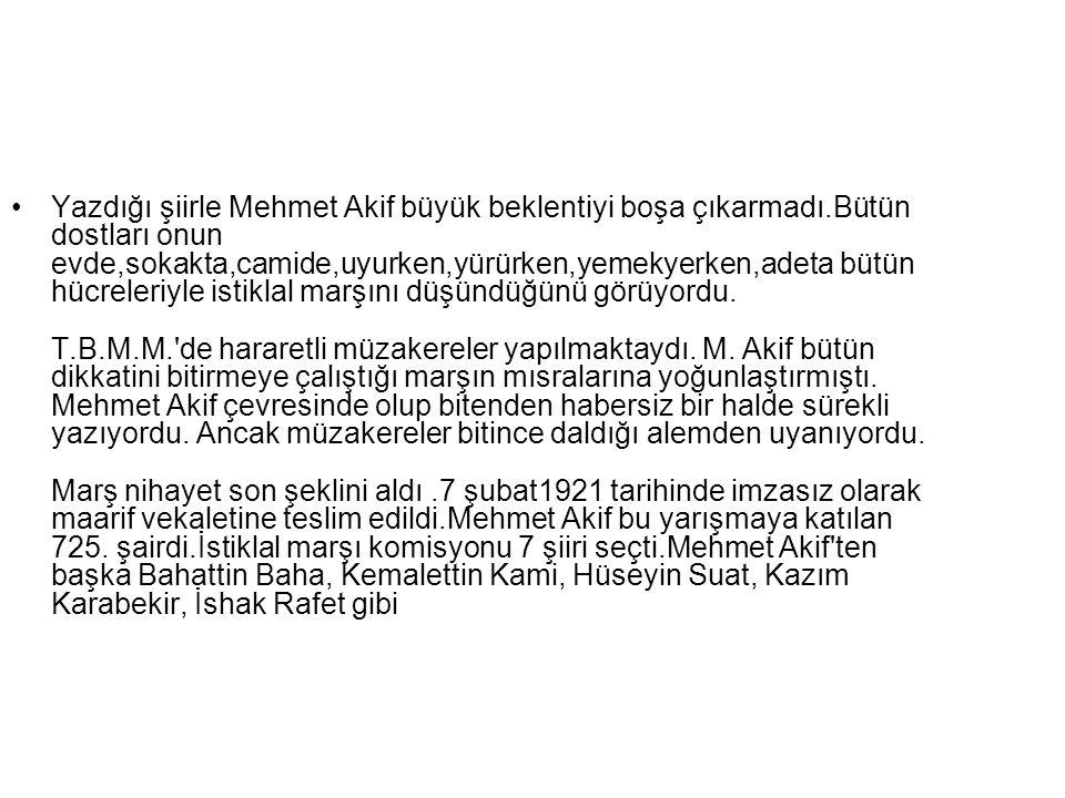 Yazdığı şiirle Mehmet Akif büyük beklentiyi boşa çıkarmadı.Bütün dostları onun evde,sokakta,camide,uyurken,yürürken,yemekyerken,adeta bütün hücreleriy