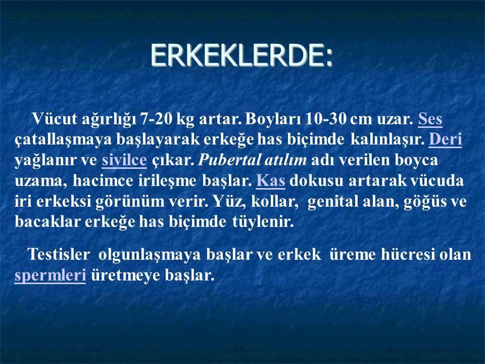ERKEKLERDE: Vücut ağırlığı 7-20 kg artar. Boyları 10-30 cm uzar. Ses çatallaşmaya başlayarak erkeğe has biçimde kalınlaşır. Deri yağlanır ve sivilce ç