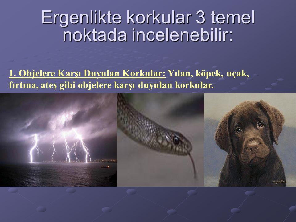 Ergenlikte korkular 3 temel noktada incelenebilir: 1. Objelere Karşı Duyulan Korkular: Yılan, köpek, uçak, fırtına, ateş gibi objelere karşı duyulan k