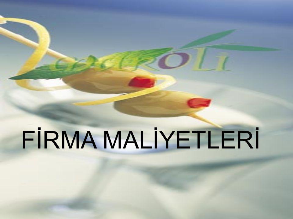 FİRMA MALİYETLERİ