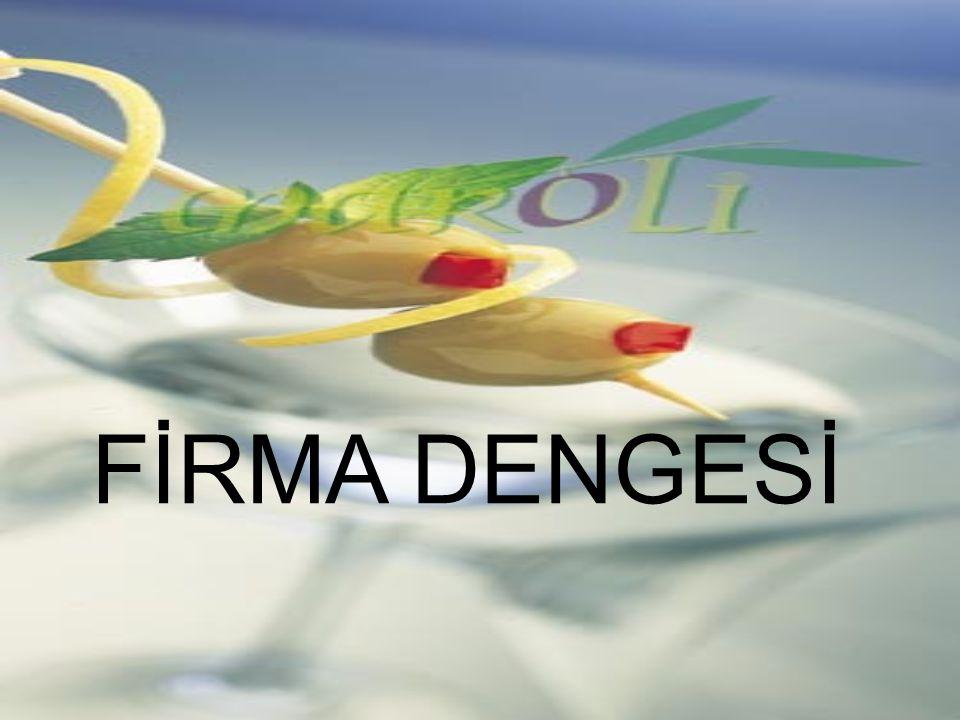 FİRMA DENGESİ