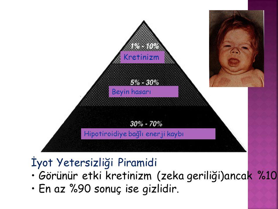 İyot Yetersizliği Piramidi Görünür etki kretinizm (zeka geriliği)ancak %10 En az %90 sonuç ise gizlidir. Kretinizm Beyin hasarı Hipotiroidiye bağlı en