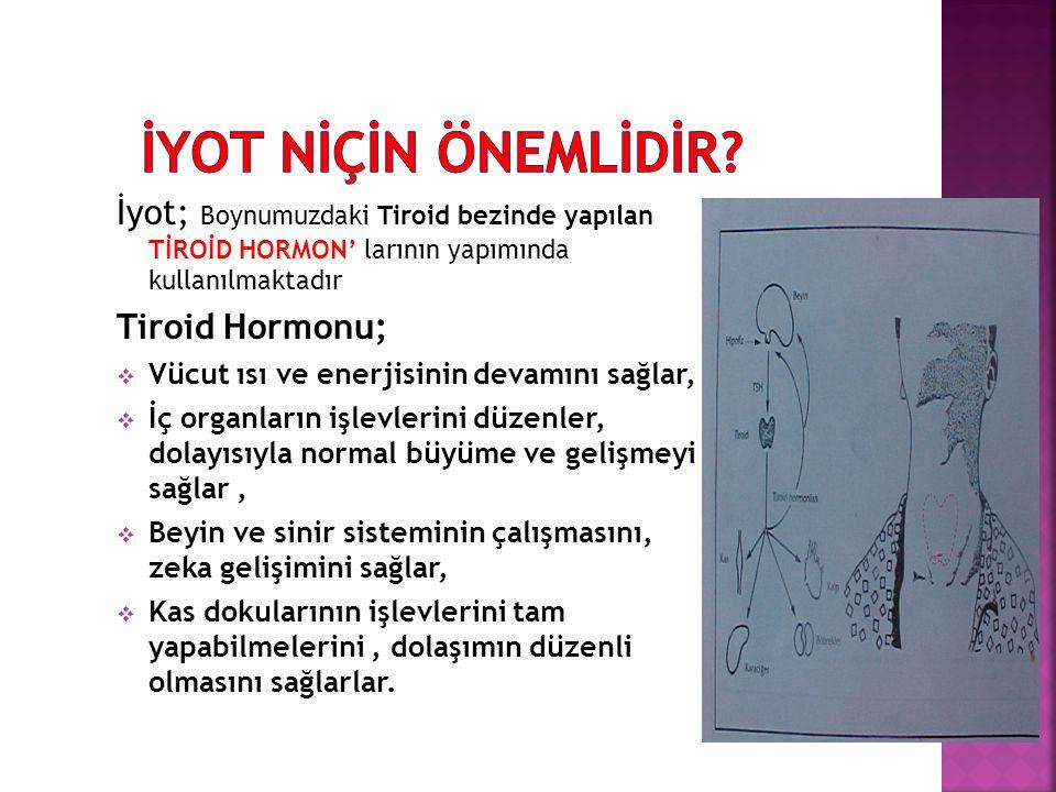 İyot; Boynumuzdaki Tiroid bezinde yapılan TİROİD HORMON' larının yapımında kullanılmaktadır Tiroid Hormonu;  Vücut ısı ve enerjisinin devamını sağlar