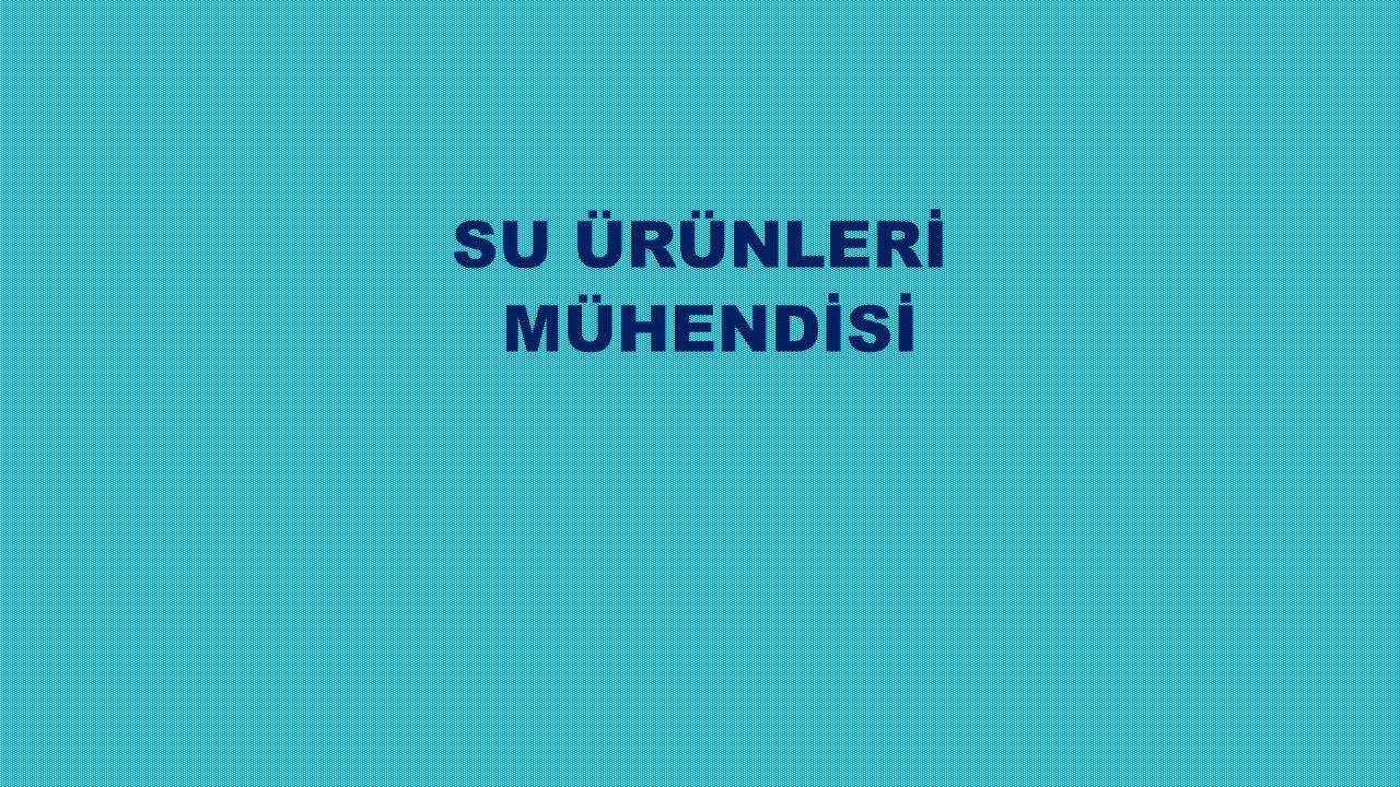 SU ÜRÜNLERİ MÜHENDİSİ