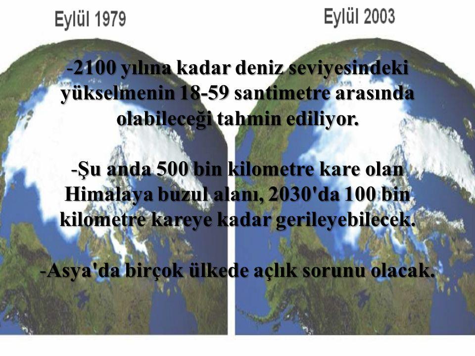 -2100 yılına kadar deniz seviyesindeki yükselmenin 18-59 santimetre arasında olabileceği tahmin ediliyor. -Şu anda 500 bin kilometre kare olan Himalay