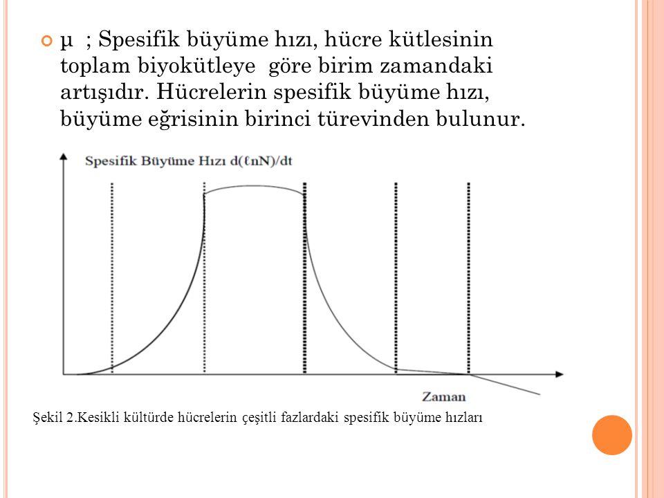 μ ; Spesifik büyüme hızı, hücre kütlesinin toplam biyokütleye göre birim zamandaki artışıdır. Hücrelerin spesifik büyüme hızı, büyüme eğrisinin birinc