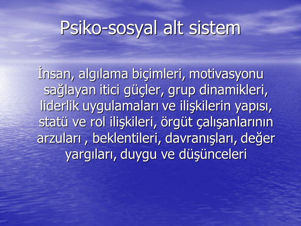 Psiko-sosyal alt sistem İnsan, algılama biçimleri, motivasyonu sağlayan itici güçler, grup dinamikleri, liderlik uygulamaları ve ilişkilerin yapısı, s