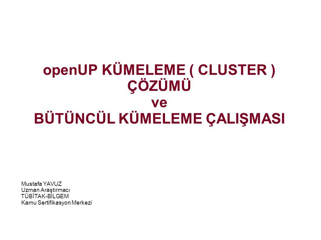 openUP KÜMELEME ( CLUSTER ) ÇÖZÜMÜ ve BÜTÜNCÜL KÜMELEME ÇALIŞMASI Mustafa YAVUZ Uzman Araştırmacı TÜBİTAK-BİLGEM Kamu Sertifikasyon Merkezi