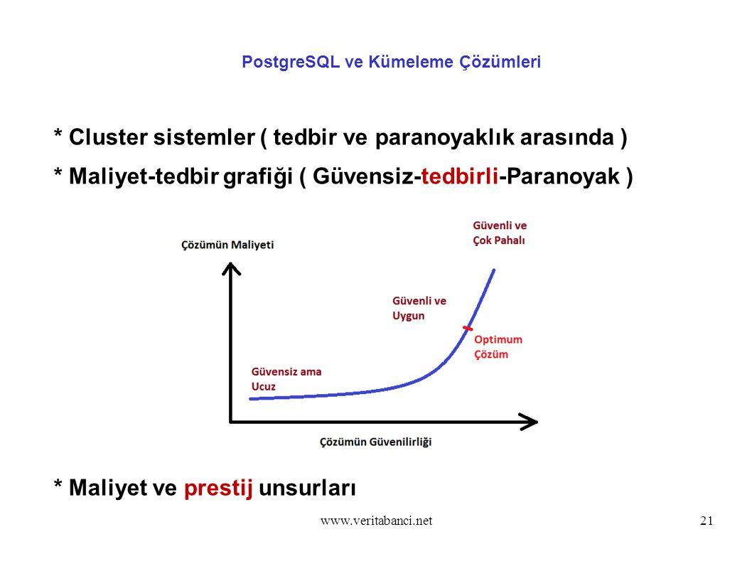 www.veritabanci.net21 PostgreSQL ve Kümeleme Çözümleri * Cluster sistemler ( tedbir ve paranoyaklık arasında ) * Maliyet-tedbir grafiği ( Güvensiz-tedbirli-Paranoyak ) * Maliyet ve prestij unsurları