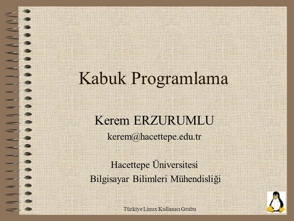 Türkiye Linux Kullanıcı Grubu Kabuk Programlama Kerem ERZURUMLU kerem@hacettepe.edu.tr Hacettepe Üniversitesi Bilgisayar Bilimleri Mühendisliği