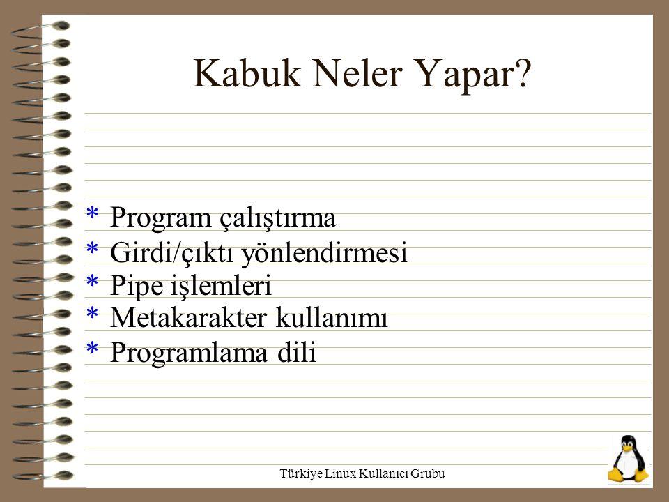 Türkiye Linux Kullanıcı Grubu Kabuk Neler Yapar? *Program çalıştırma *Girdi/çıktı yönlendirmesi *Pipe işlemleri *Metakarakter kullanımı *Programlama d