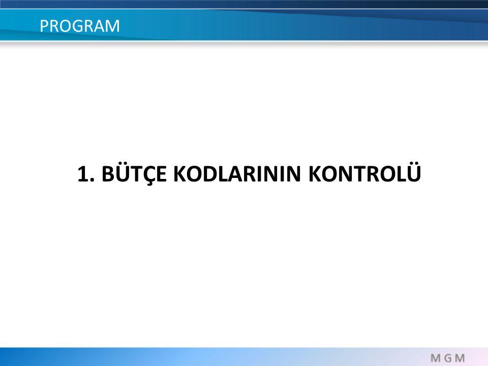 PROGRAM 1. BÜTÇE KODLARININ KONTROLÜ