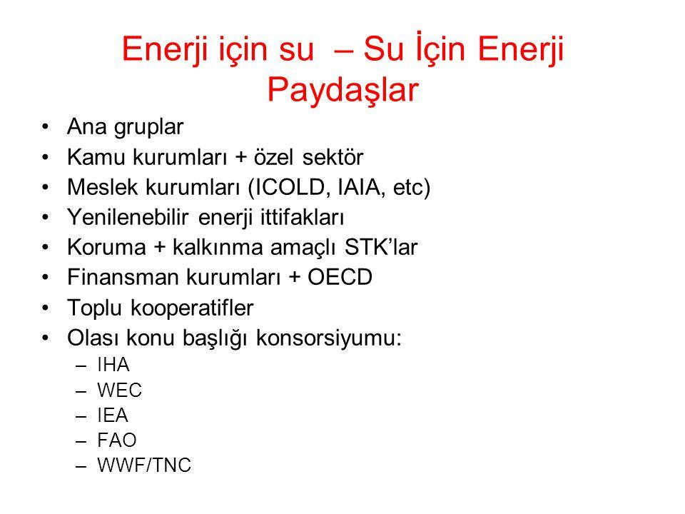 Enerji için su – Su İçin Enerji Paydaşlar Ana gruplar Kamu kurumları + özel sektör Meslek kurumları (ICOLD, IAIA, etc) Yenilenebilir enerji ittifaklar