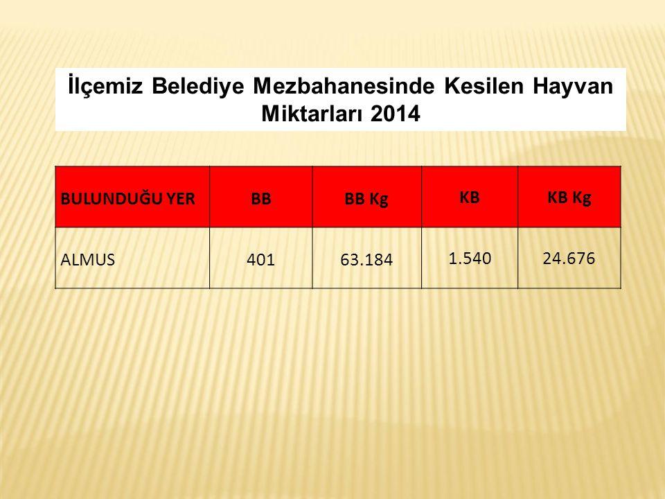 İlçemiz Belediye Mezbahanesinde Kesilen Hayvan Miktarları 2014 BULUNDUĞU YERBBBB Kg KBKB Kg ALMUS40163.184 1.54024.676