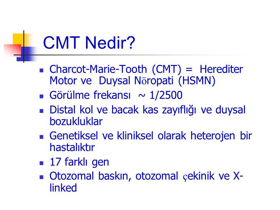 Gen-Hastalık GenSebep Olduğu Hastalık Myelin Protein Zero (MPZ) CMT1B, CMT2, DSS Peripheral Myelin Protein 22 (PMP22) CMT1A, DSS, HNPP Connexin 32 (Cx32)CMTX