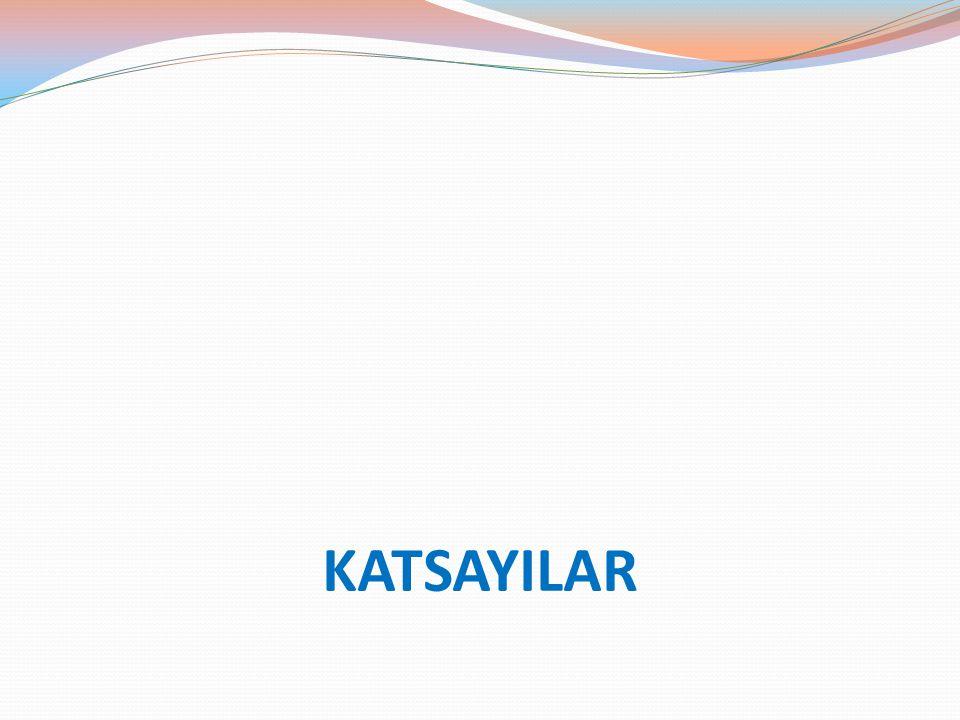 KATSAYILAR