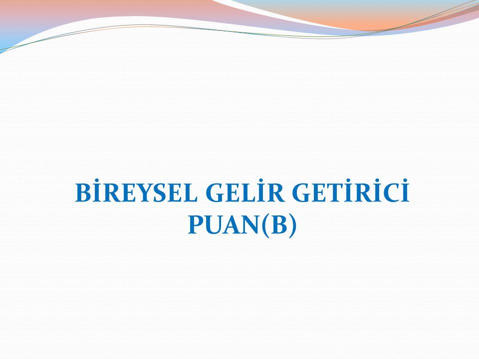 BİREYSEL GELİR GETİRİCİ PUAN(B)