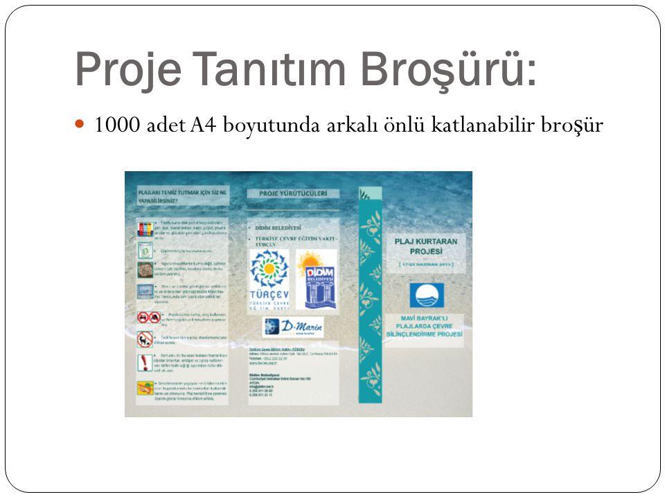 Proje Tanıtım Broşürü: 1000 adet A4 boyutunda arkalı önlü katlanabilir bro ş ür
