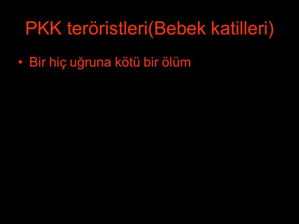 PKK teröristleri(Bebek katilleri) Bir hiç uğruna kötü bir ölüm