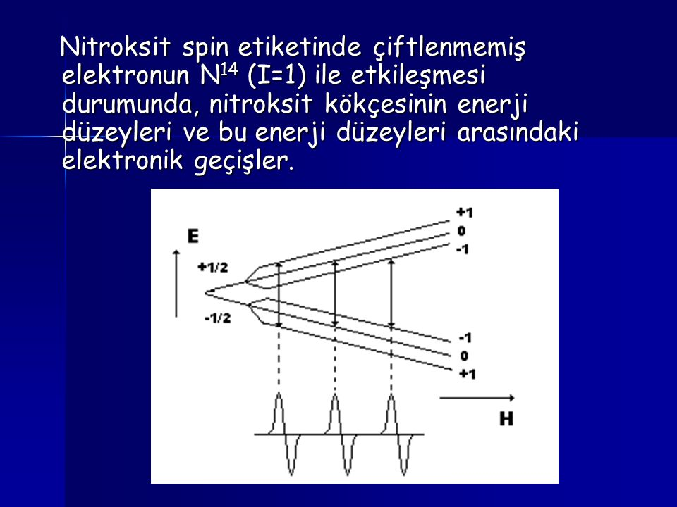 Nitroksit spin etiketinde çiftlenmemiş elektronun N 14 (I=1) ile etkileşmesi durumunda, nitroksit kökçesinin enerji düzeyleri ve bu enerji düzeyleri a