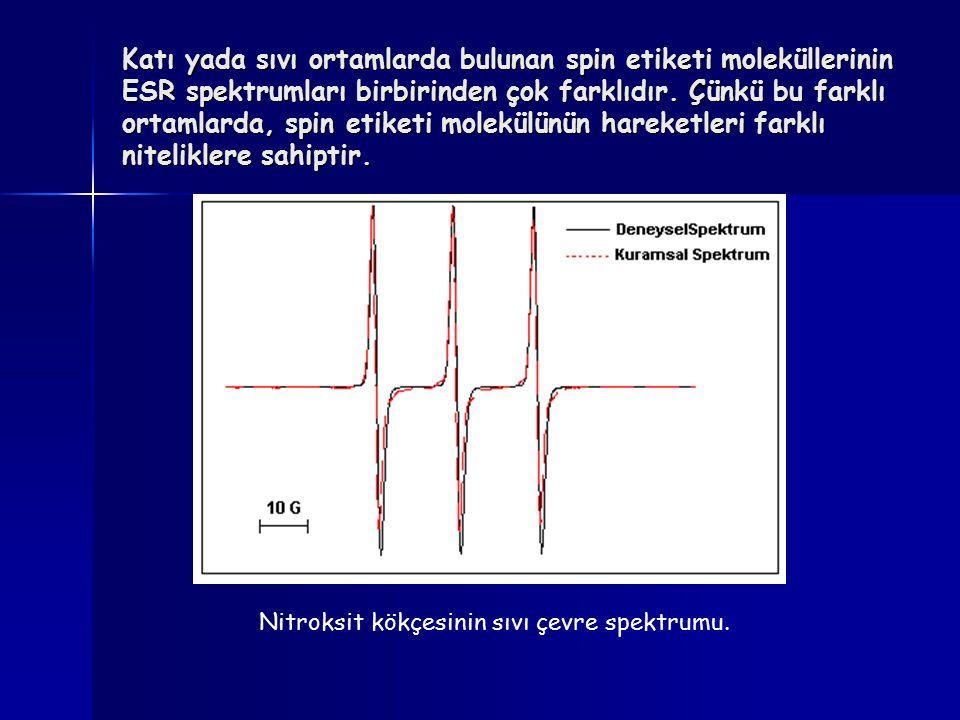 Katı yada sıvı ortamlarda bulunan spin etiketi moleküllerinin ESR spektrumları birbirinden çok farklıdır. Çünkü bu farklı ortamlarda, spin etiketi mol