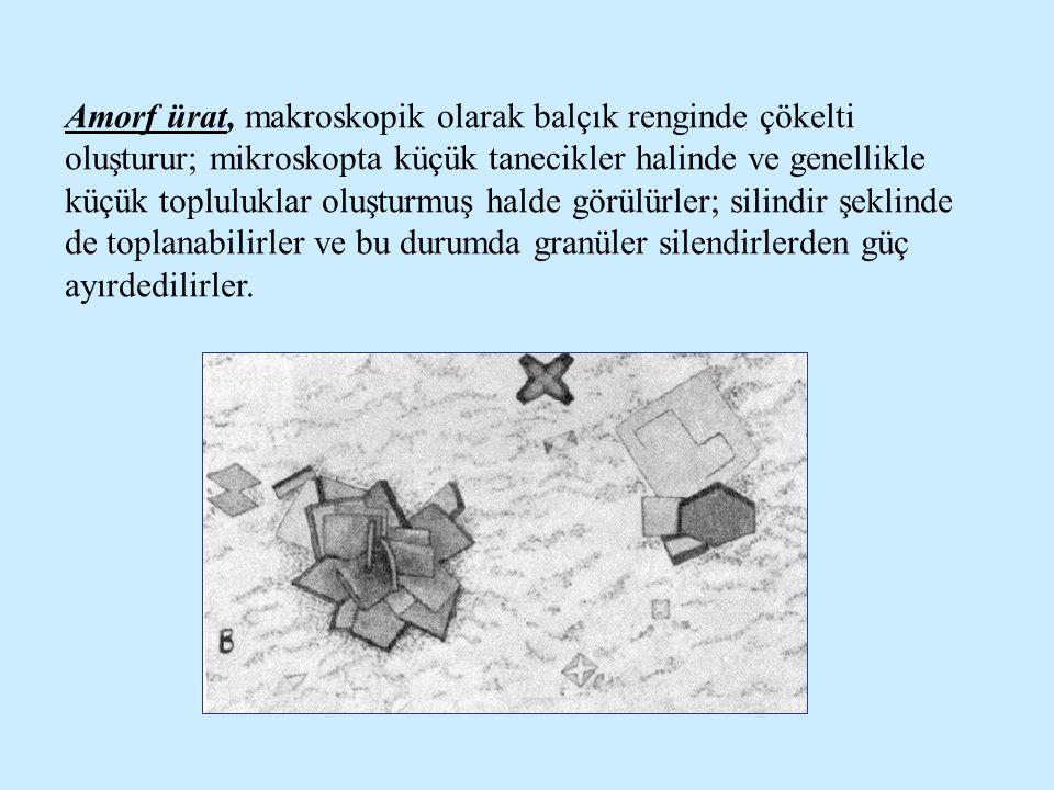 Amorf ürat, makroskopik olarak balçık renginde çökelti oluşturur; mikroskopta küçük tanecikler halinde ve genellikle küçük topluluklar oluşturmuş hald