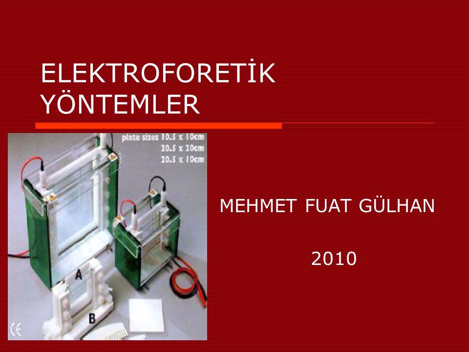ELEKTROFORETİK YÖNTEMLER MEHMET FUAT GÜLHAN 2010