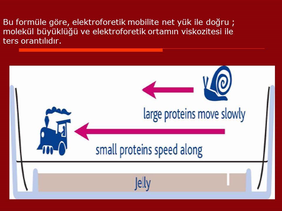 Bu formüle göre, elektroforetik mobilite net yük ile doğru ; molekül büyüklüğü ve elektroforetik ortamın viskozitesi ile ters orantılıdır.