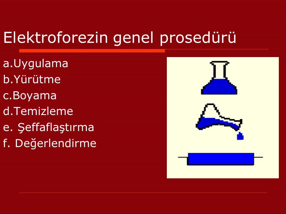 Elektroforezin genel prosedürü a.Uygulama b.Yürütme c.Boyama d.Temizleme e. Şeffaflaştırma f. Değerlendirme