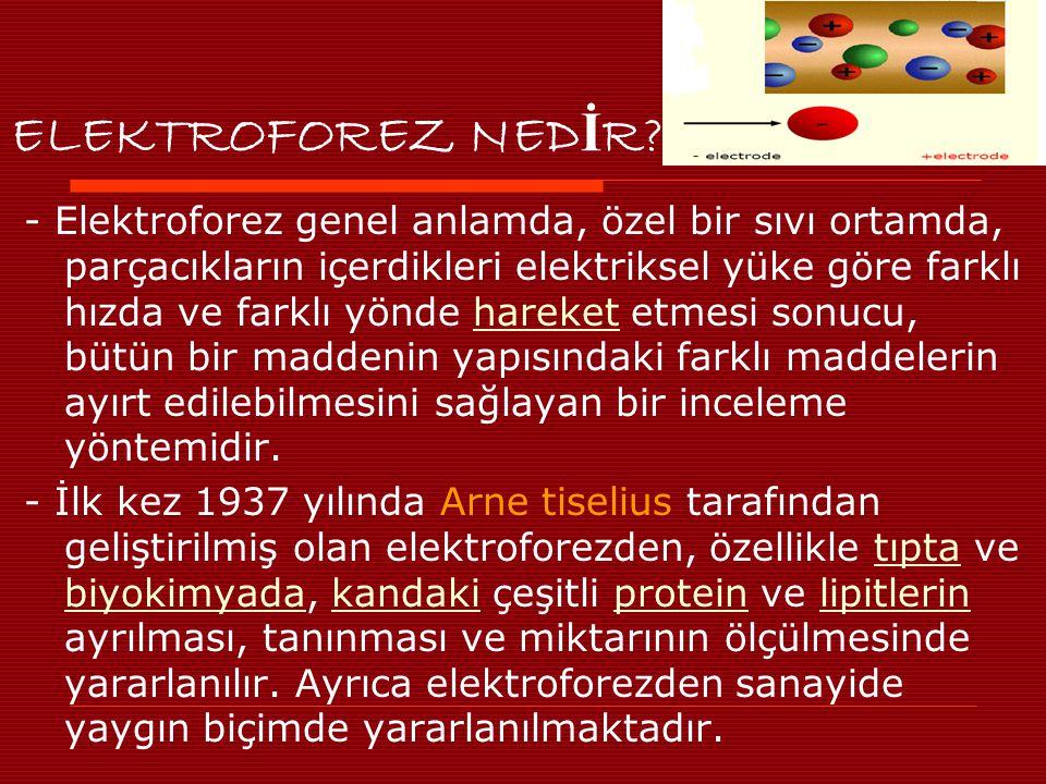 ELEKTROFOREZ NED İ R.