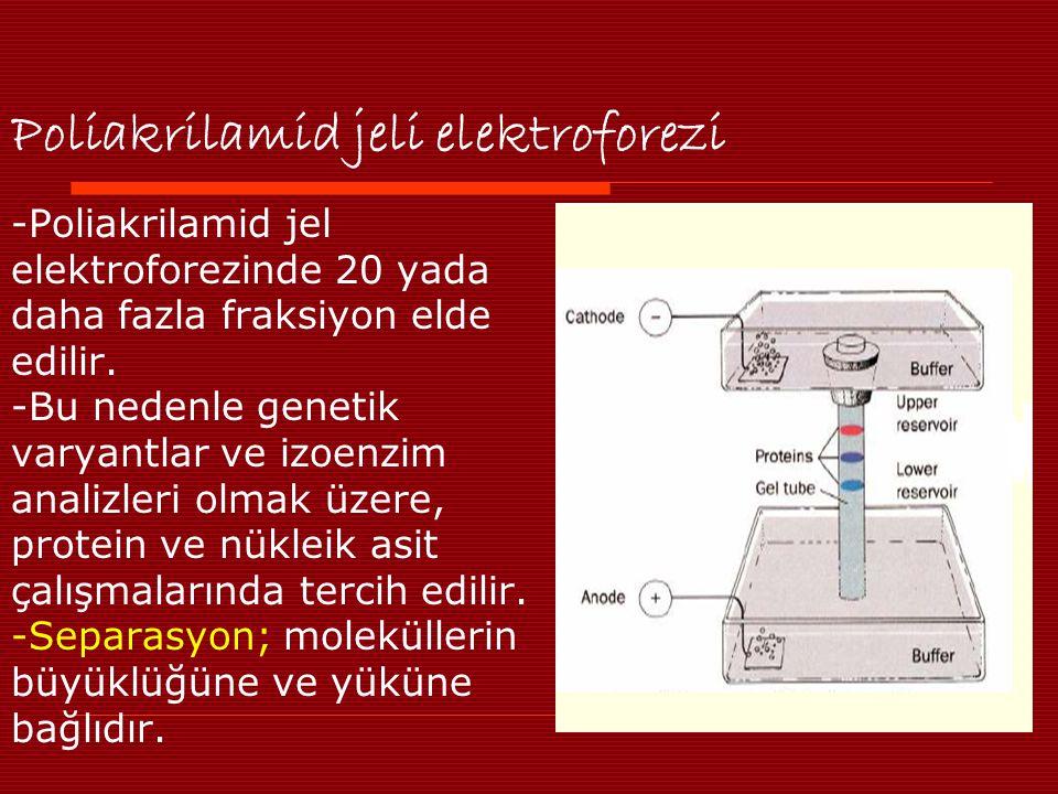 Poliakrilamid jeli elektroforezi -Poliakrilamid jel elektroforezinde 20 yada daha fazla fraksiyon elde edilir. -Bu nedenle genetik varyantlar ve izoen